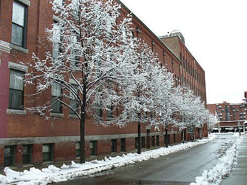 Snow on Church Street