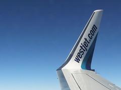 737 Winglet