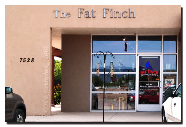 The Fat Finch