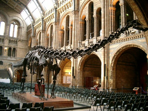 Diplodocus skeleton at the Natural History Museumof London