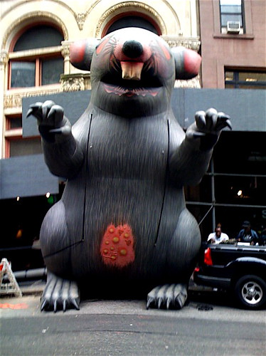 The Giant Inflatable Rat by Ann Althouse