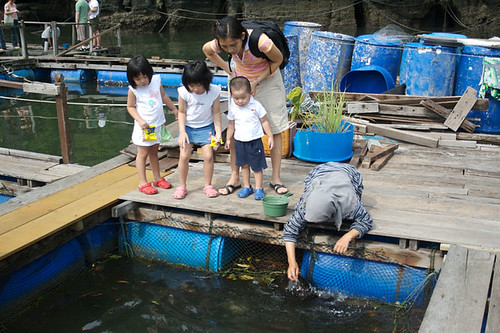 Mangrove Tour - Fish Farm - 1.jpg