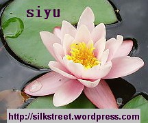 SilkStreet - Culture & Society