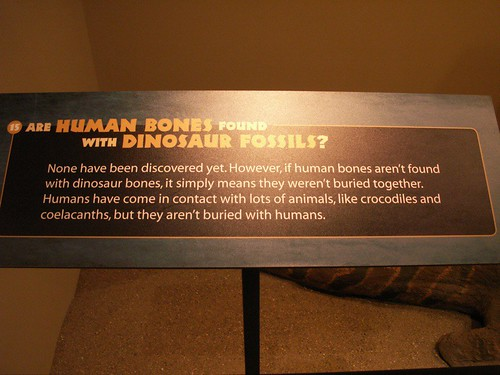 Dino facts?