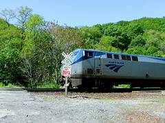Amtrak at the Plummer's Hollow crossing