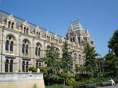 Natural History Museum (5)