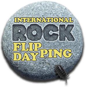 International Rock-Flipping Day badge