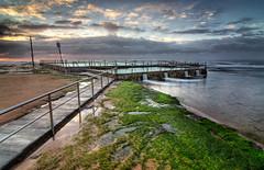 Seaweed Path to Pool