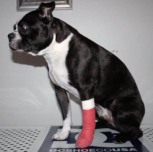 Injured Henry