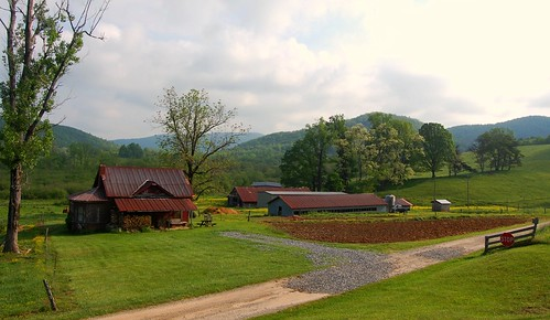 May Morning on a Small Farm in Suches, Georgia