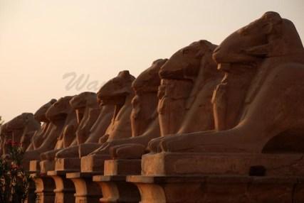 sphinx row karnak