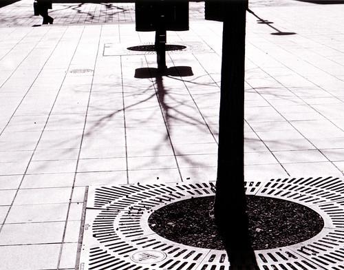 Griff der Schatten