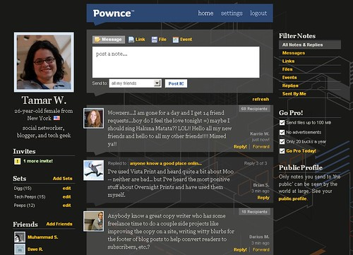 Pownce User Interface
