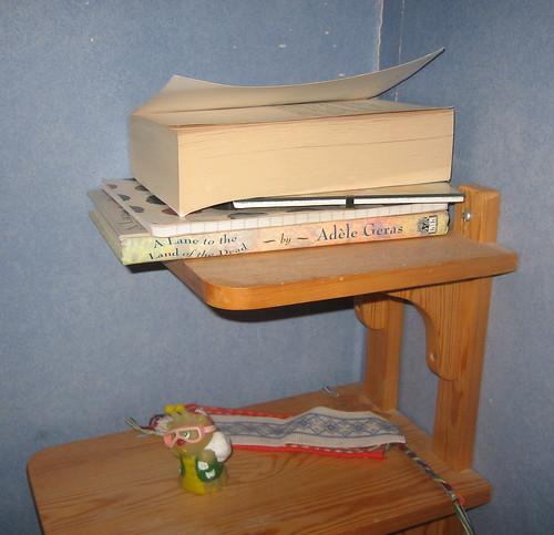Borås books