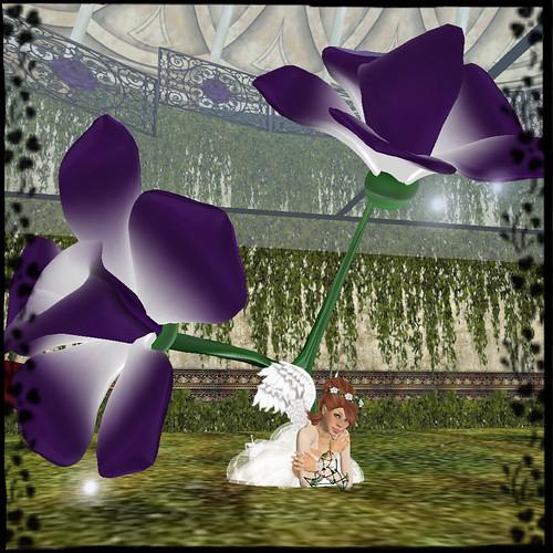 roseangel008