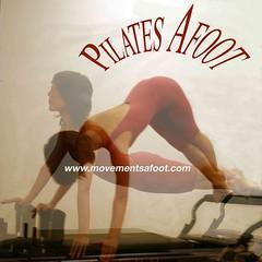 Pilates Snake