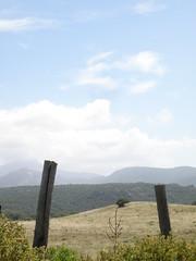 Punta Cauria