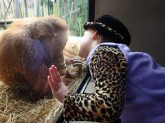 Zoo May 8