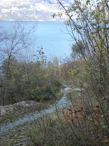 acqua sul sentiero