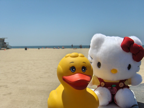 Kitty & Dicky on a beach