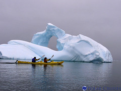 Antarctica kayakers