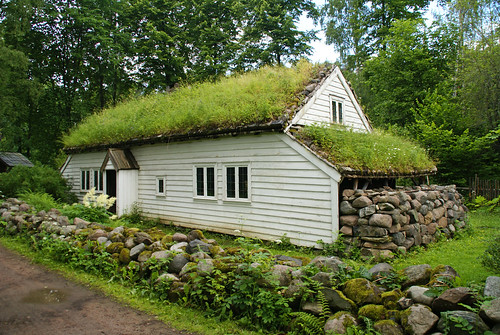 Time to Mow the Roof