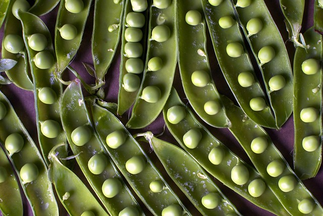peas in pods and then more pods