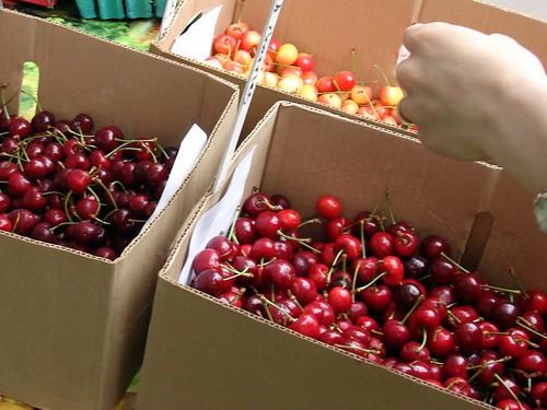 cherries x3