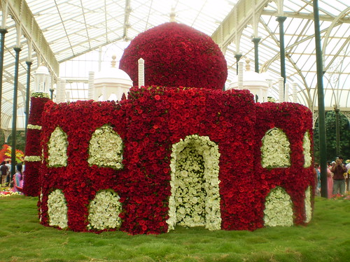 Taj Mahal in red roses