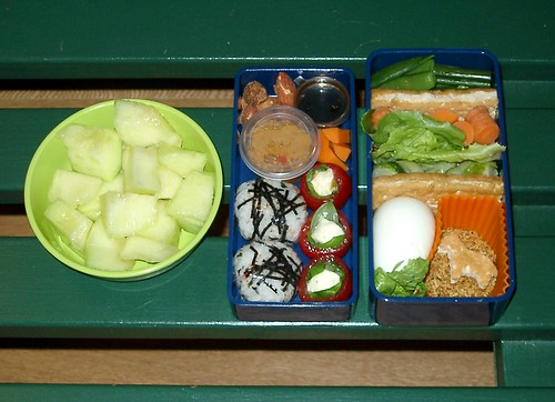Gnoegnoe's Indonesian-hinted bento #23