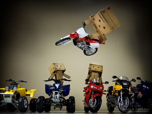 072/365:  Danbo Dirt Bike Jump!