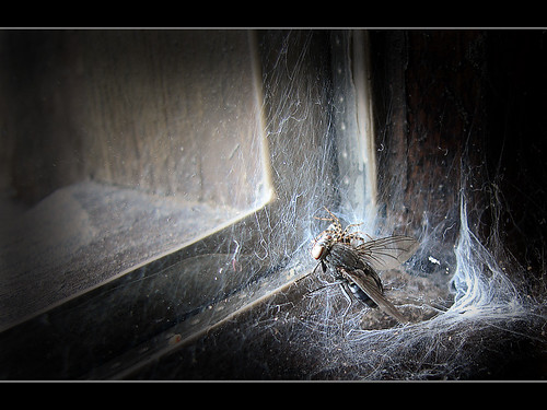 pesadilla / cauchemar / nightmare por Darco TT.