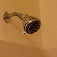 What causes tiny worms in the shower tiles? | eHow UK