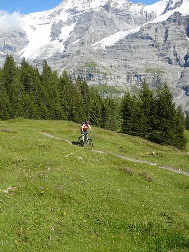 Alpine Singletrack below Kleiner Scheidegg