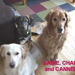 SADIE, CHARLIE & CANELLE