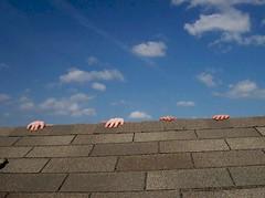Melissa & Michael Rooftop 4