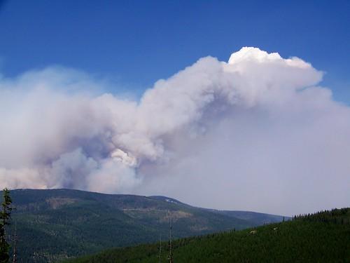 Chippy Creek fire