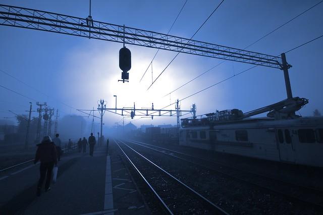 Blue misty morning...