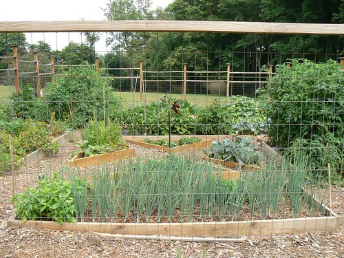 july garden view