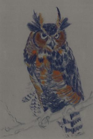 20101110_owl_step3