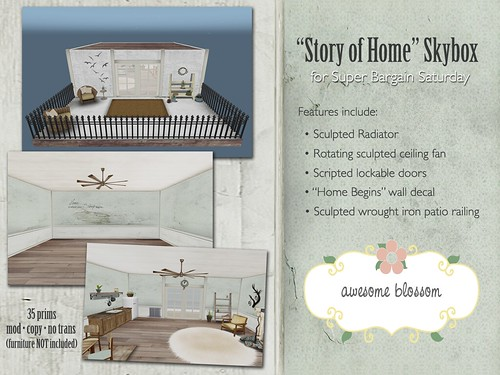 """Story of Home"" Skybox"