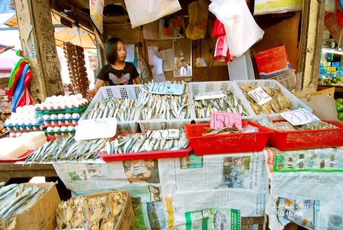 Philippinen  菲律宾  菲律賓  필리핀(공화�) Pinoy Filipino Pilipino Buhay  people pictures photos life Philippines, rural, food, woman, young, vendor, seafood, Baguio dried tinapa fish