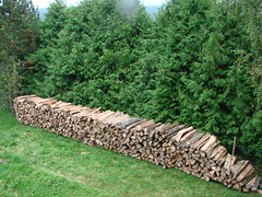 le bois pour se chauffer