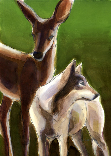 Wolf and Deer.