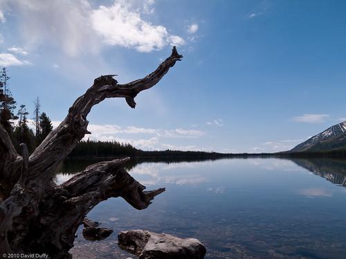 Leigh Lake.