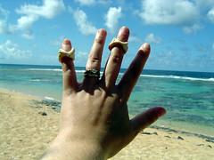 Larsen's Beach - shells