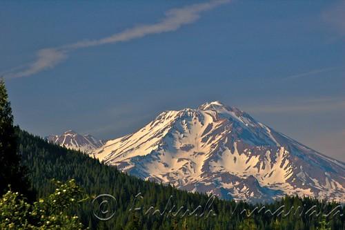 Mt Shasta II