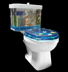 Fish toilet!