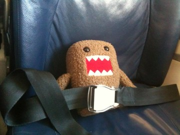 All buckled in