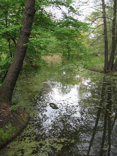 Berlin, Tiergarten, Avril 2006